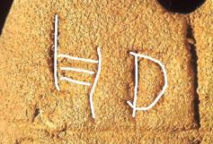 d7f67-nwgrid